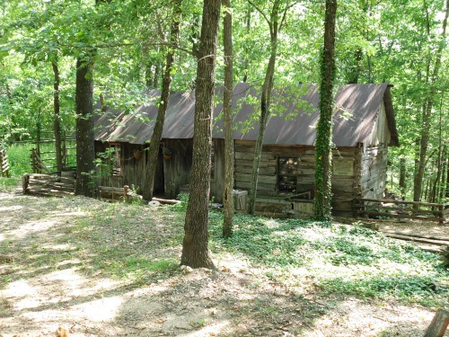 Today 39 s story why blend the past with the present for Cabins near silver dollar city