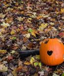 Hearts on a pumpkin